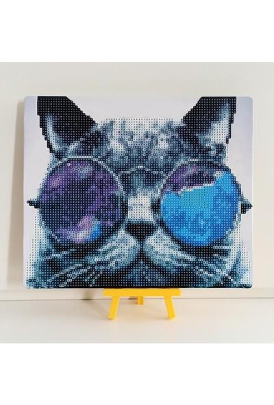 DIY Boncuklu Taşlı Mozaik Elmas Goblen Pano Tablo Resim Puzzle Çocuklar İçin 21 x 25 cm