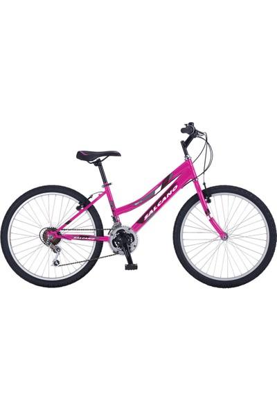 Salcano Excel 24 Lady Bayan Bisikleti (140 cm Üstü Boy)