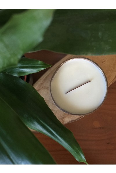 Buddhamum Big Coconut Vanilya Aromalı Doğal Soya Mum