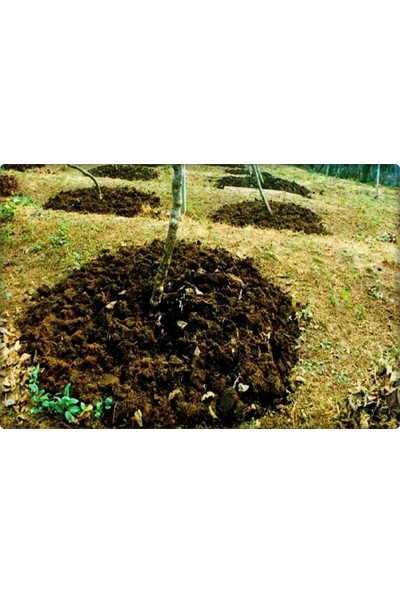 Organiksa Çotanak Power Organik Gübre 25 kg
