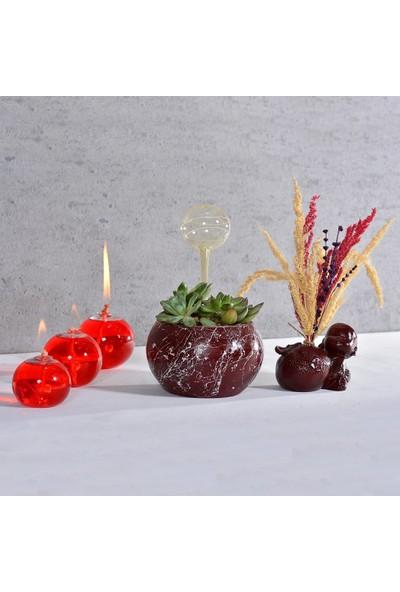 Flovart Balon Cam Kandil Şeffaf - Kandil Yağı Hediyeli