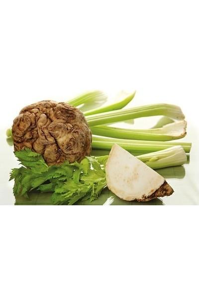 Agrobazaar Kereviz Tohumu (Celery) 50+ Tohum