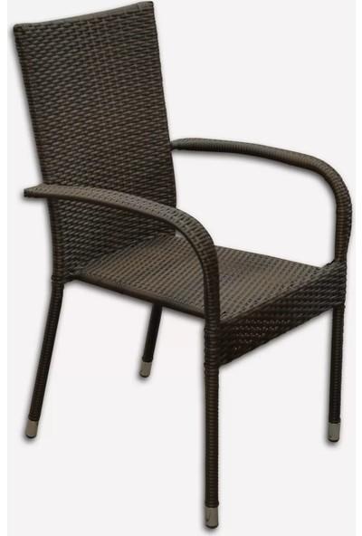 Evinizin Atölyesi 2 Adet Rattan Sandalye, Bahçe Sandalyesi, Balkon Sandalyesi, Sandalye