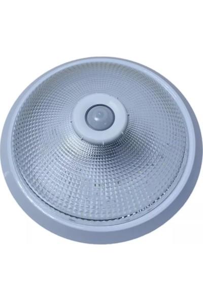 Blue Lighting Hareket Sensörlü 360 Derece Tavan Tipi Cam Armatür