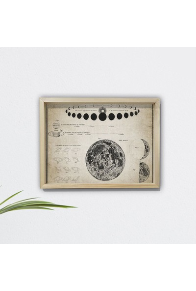 DekorLoft Doğal Çam Çerçeveli Duvar Tablosu Ay ve Astronomi Bilimi