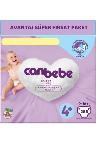 Canbebe Bebek Bezi Beden: 4+ (9 - 16 Kg) Maxi Plus 288'LI