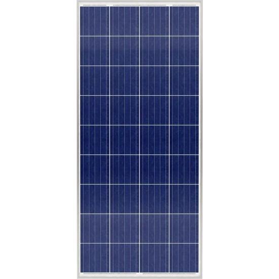 Tommatech 170W Watt 36P Tommatech Polikristal Solar Güneş Paneli