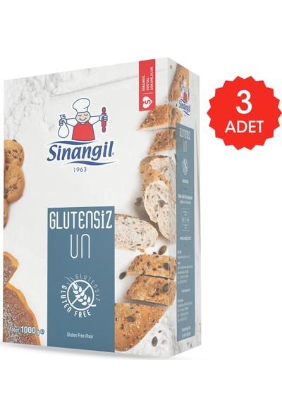 Sinangil Glutensiz Un 1 kg x 3'lü