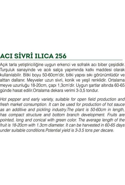 Agro Tohum Ata Tohumu Yöresel Sivri Biber Acı Ilıca 1 gr Yaklaşık 100 Adet