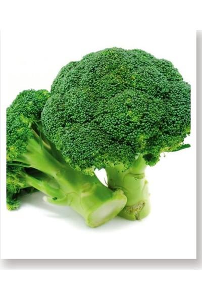 Agro Tohum Doğal Yerli Brokoli Çeşit Rapid 5 gr