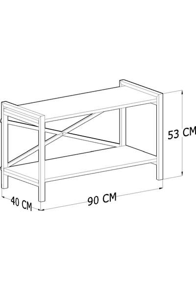 Tocco Anemon Modern Raflı 90 cm Metal Sehpa Lüx Tv Ünitesi