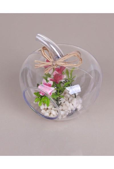 Eva Taşlı Fanusta Çiçek