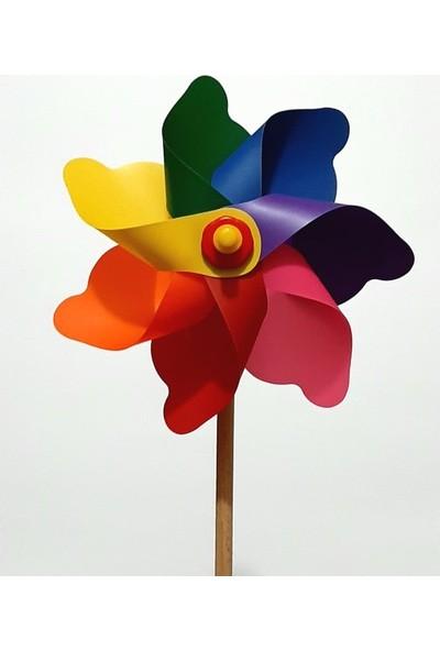 Polingarden Rüzgar Gülü Çap 19 cm - 4 Adetli Koli