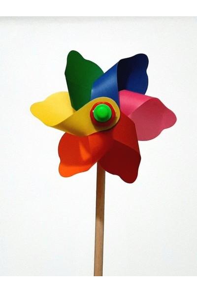 Polingarden Rüzgar Gülü Çap 12 cm - 5 Adetli Koli