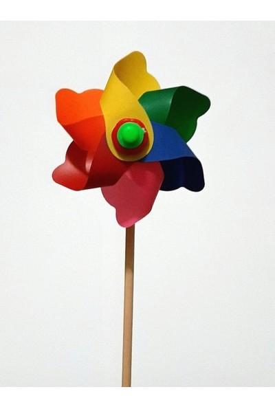 Polingarden Rüzgar Gülü Çap 10 cm - 5 Adetli Koli
