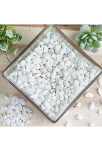 Alyones 1kg Beyaz Dolomit Taş 1-2cm