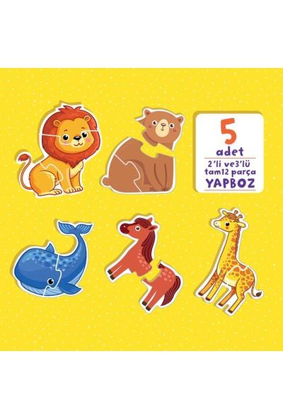 Bilgi Dolu İlk Kitaplarım Hayvanlar Ailesi Seti (5 Kitap) - Kevser Aya