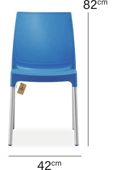 Bahex Castel 2'li Sandalye Metal Ayaklı 3 Farklı Renk Seçeneği