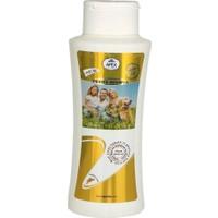 Apex Pratex Şampuan Buğday Özlü