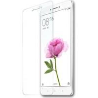 Teleplus Xiaomi Mi Max 2 Temperli Ekran Koruyucu