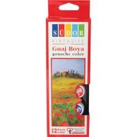 Südor Guaj Boya 12 Renk Şişeli 12x15 ml.