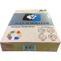 Alex Schoeller A4 Fotokopi Kağıdı 500 lü Somon 550