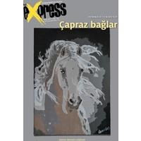 Bir+Bir Express, Sayı 155