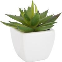 Tantitoni Seramik Saksılı Yapay Aloe Vera - 8 cm