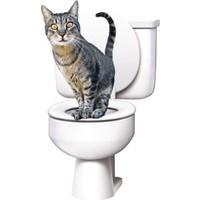 Pratik CitiKitty- Kedi Klozet Eğitim Seti