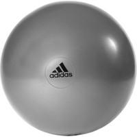 Adidas 55cm Gymball DGH Solid Grey k(ADBL-13245GR)