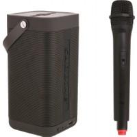 TechnoStyle Yüksek Güçlü Hoparlör, Karaoke Mikrofon Seti