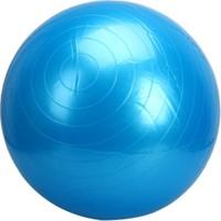 Sgsports Pılates Topu (65 Cm)