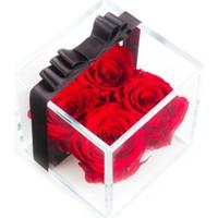 Solmayan Güller Red Forever
