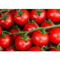 Tohhum Geniş Cherry Domates (Large Cherry) 15 Tohum