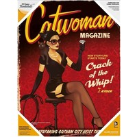 Sd Toys Dc Bombshells: Catwoman Glass Poster
