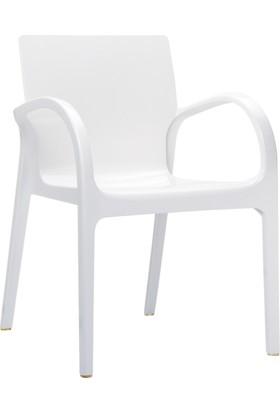 Siesta Contract Dejavu Sandalye - Parlak Beyaz