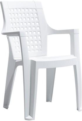 Gardelia Contract Elegance Klasik Sandalye - Beyaz
