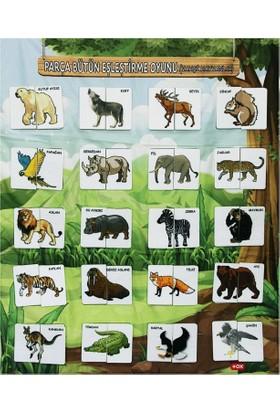 Tox Resmi Tamamlama Vahşi Hayvanlar Eğitici Pano