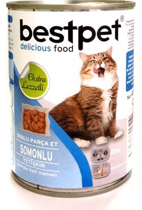 Bestpet Soslu Parça Etli Somonlu Konserve Yetişkin Kedi Maması 415 gr