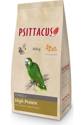 Psittacus Maintence High Protein Formula 800 Gr Papağan Yemi