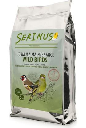 Serinus Maintance Formula Wild Birds 5000 Gr Kanarya Yemi