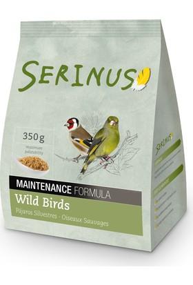 Serinus Maintance Formula Wild Birds 350 Gr Kanarya Yemi