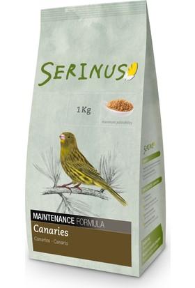 Serinus Maintance Formula Canaries 1000 Gr Kanarya Yemi