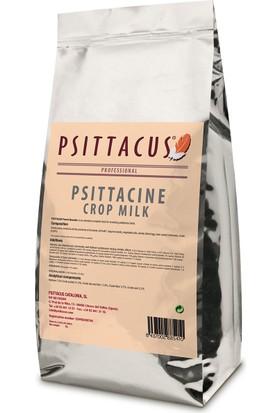 Psittacus Psittacine Crop Milk 500 Gr Papağan Yemi