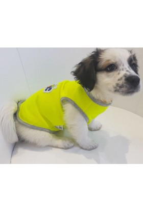 Dogi & Dog Neon Music Atlet