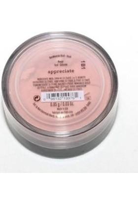 Bare Minerals Appreciate Rouge Açık Şeftali Rengi Allık