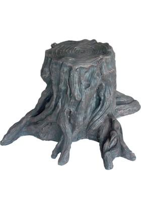 Dansör Kesik Ağaç Kökü Arka Fon