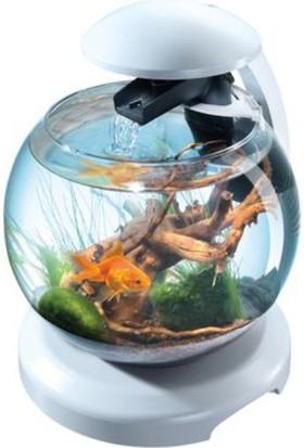 Tetra Cascade Globe Filtre ve Lambalı Fanus Beyaz