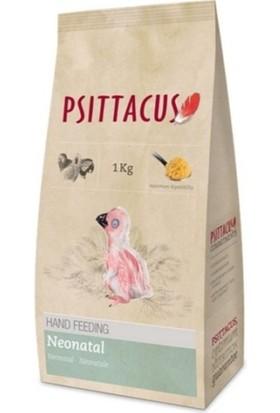 Psittacus Hand Feeding Neonatal Formula Papağan Elle Besleme Maması 1 kg