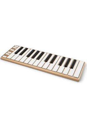 CME-Pro XKey 25 Tuşlu MIDI Klavye (Apple Gold)